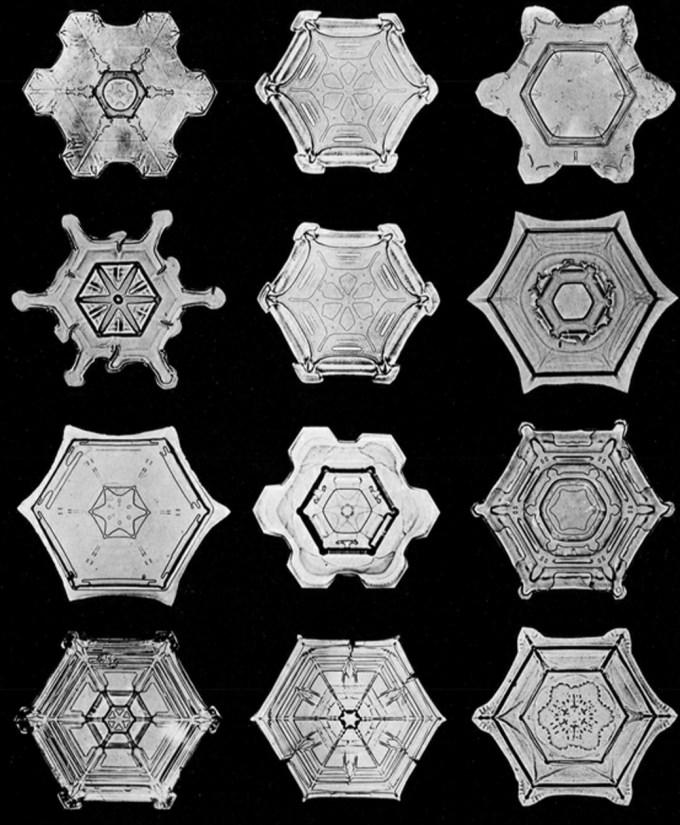 wilsonbentley_snowflakes9.jpg?resize=680%2C825