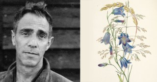 Growing Through Grief: Derek Jarman on Gardening as Creative Redemption, Consecration of Time, and Training Ground for Presence