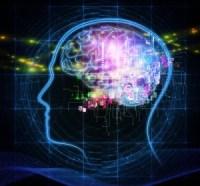 brain as computer