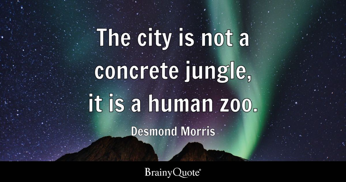 Love Never Dies Quotes Wallpaper The City Is Not A Concrete Jungle It Is A Human Zoo