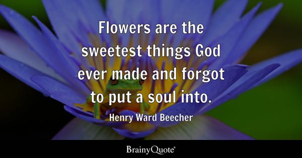 Henry Ward Beecher Quotes Brainyquote