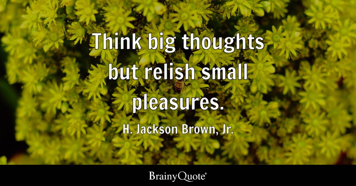 H Jackson Brown Jr Think Big Thoughts But Relish