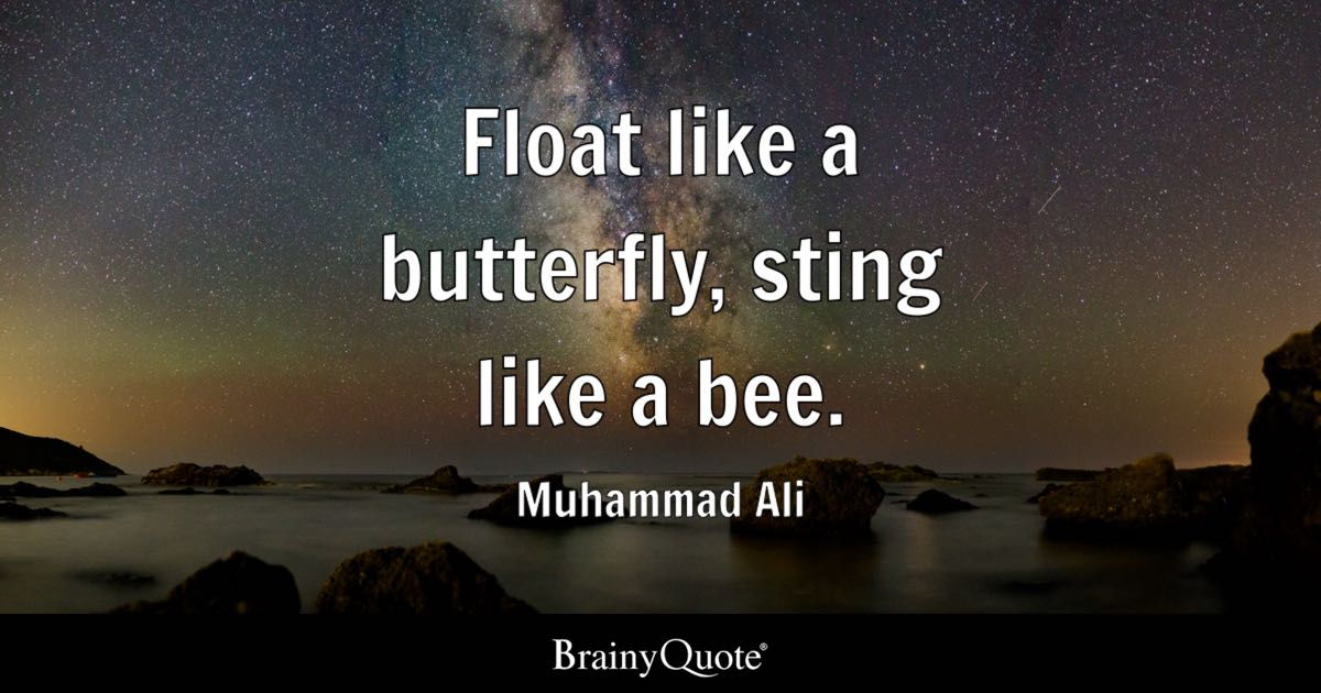 Sunflower Wallpaper With Quote Float Like A Butterfly Sting Like A Bee Muhammad Ali
