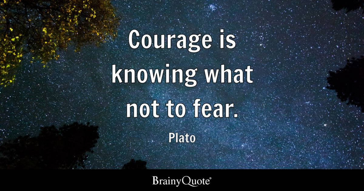 Hurting Love Quotes Wallpapers Plato Courage Is Knowing What Not To Fear