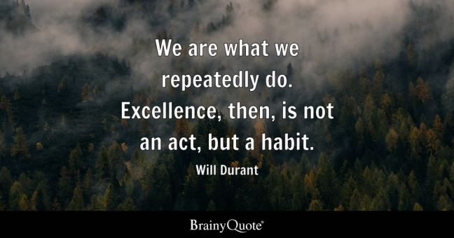 Image result for we are what we repeatedly do