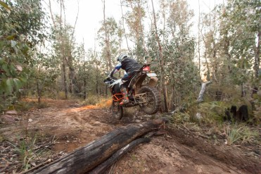 How to ride logs © brake magazine 2016