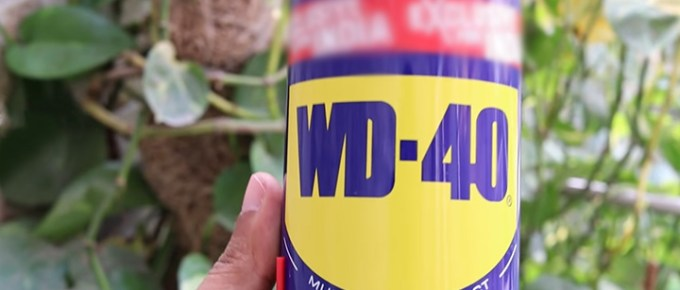 Is It Safe to Spray WD40 on Brakes