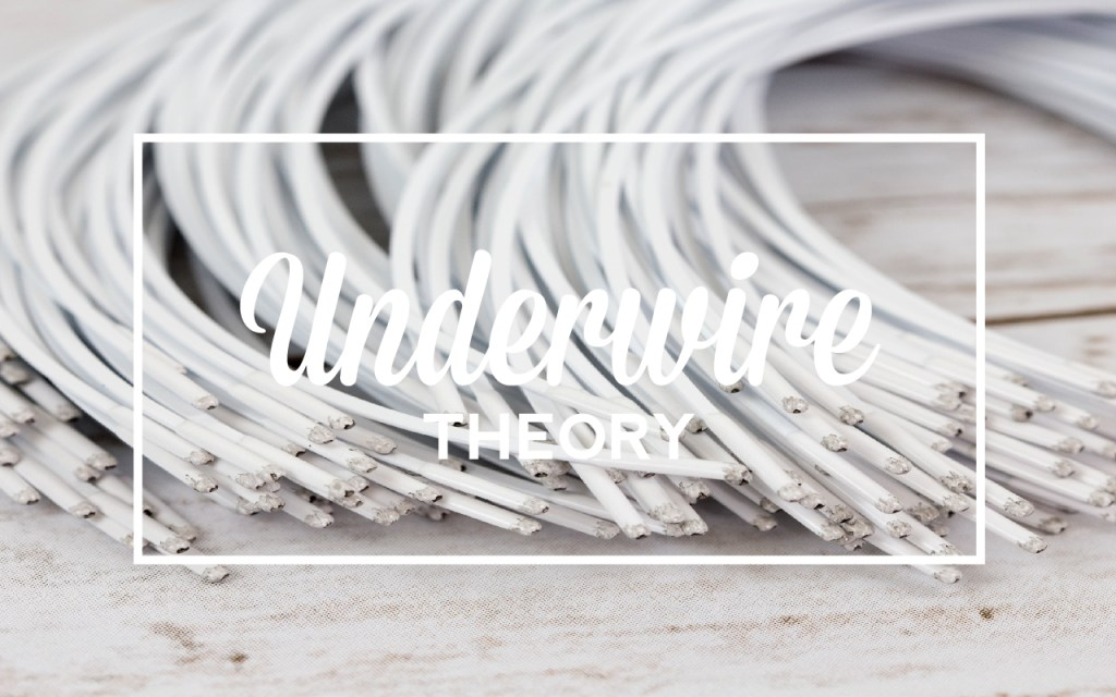 133d914bdbd This is the first post in a new series about the theory behind underwires.  This series will cover several topics including wire types
