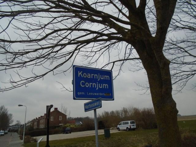 Cornjum
