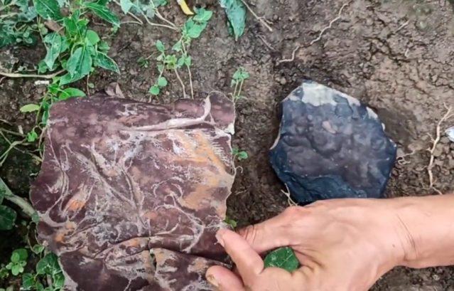 Local onde foi encontrado o Meteorito de Kolang e pedaço de telha arrancado na queda - Créditos: Josua Hutagalung