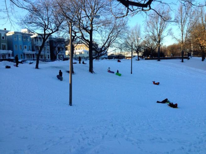 Sledding in Southie
