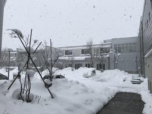慶應義塾大学先端生命科学研究所の写真