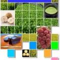 最新農業技術・品種2018 表紙