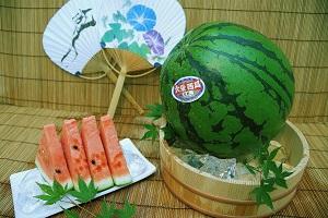 大栄西瓜の写真