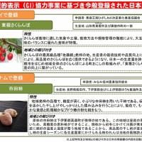 地理的表示協力事業に基づき今般登録された日本産品