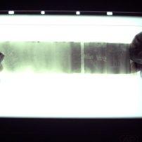 i soggetti visibili sulla pellicola scaduta da 50 anni