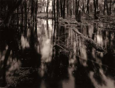 "Riverspective - Davide Rossi - 4x5"" large formar camera, Rollei Ortho film, gelatin ilver print, sepia toner"