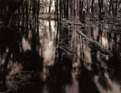 "Riverspective - Davide Rossi - 4x5"" large formar camera, Rollei Ortho film, gelatin ilver print, sepia toner"