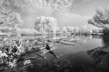 Riverspective - Matteo Barbon - Infrared digital camera