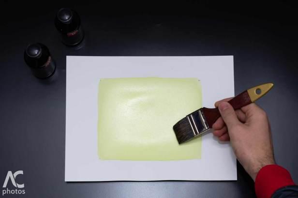 la fase di emulsionatura della carta