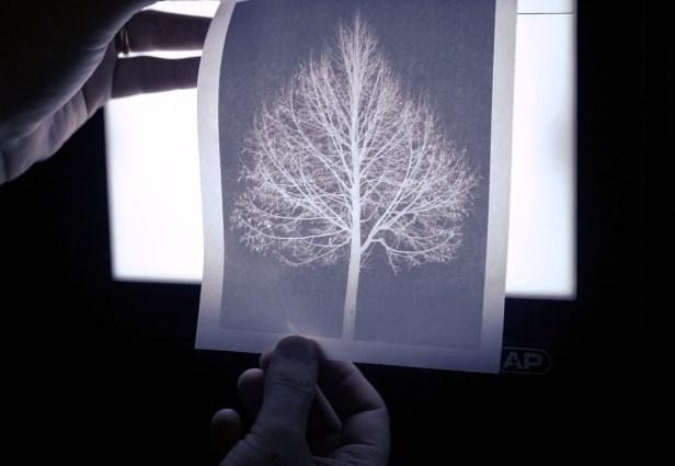 la carta cerata - Branco Ottico-07