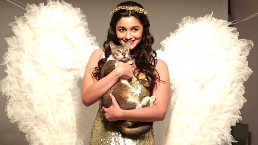 Dimple Girl Wallpapers Alia Bhatt Cutest Pictures 30 Best Looks Of Alia Bhatt Of