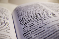A Picture of Words, by dvux