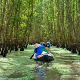 Rowing Boat In Mekong Delta