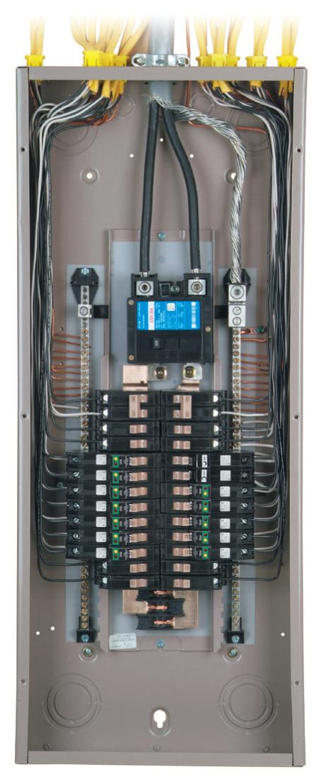 100 Amp Load Center Wiring Diagram Panels And Breakers