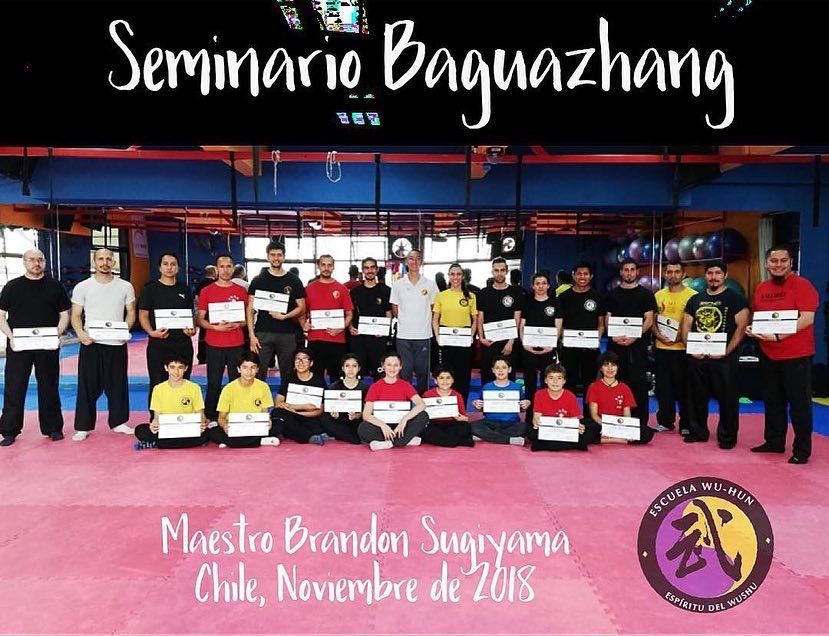 Bagua Seminar in Santiago, Chile