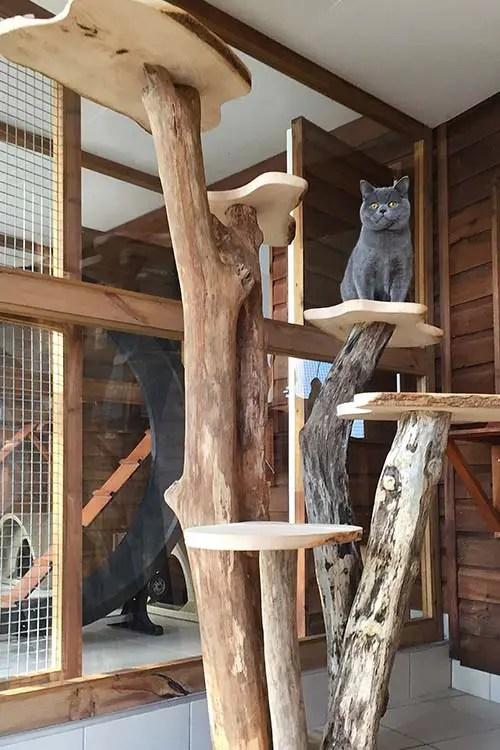 bespoke-cat-tree-2