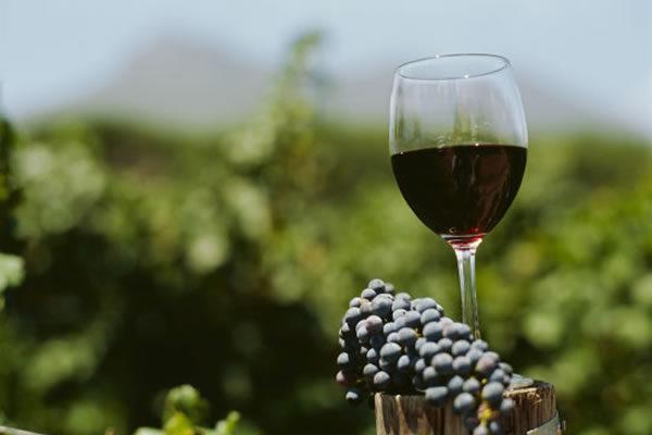 5 mejores vinos argentinos para tu barbacoa