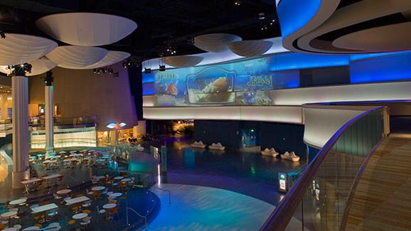 Georgia Aquarium  Brasfield  Gorrie
