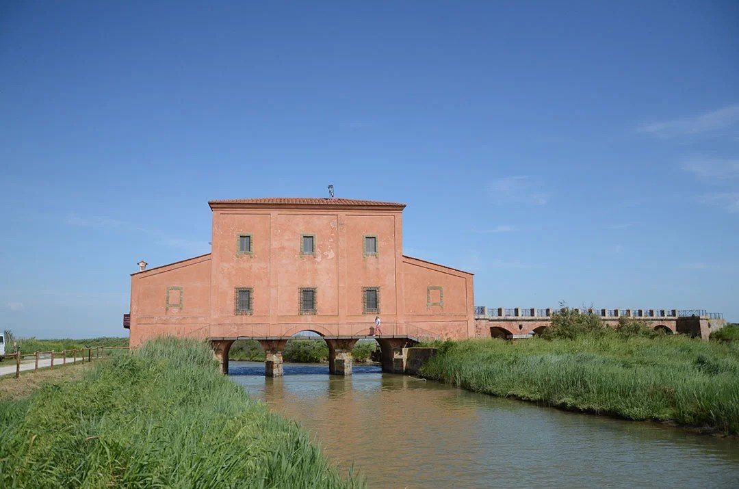Casa Rossa Ximenes e a Reserva Natural Diaccia Botrona  BRASIL NA ITALIA