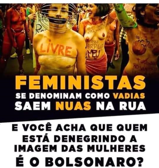 """""""Feminists call themselves sluts and go out naked in public. And you think Bolsonaro is the one denigrating the image of women?"""""""