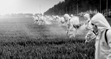 Brazil legalizes 197 pesticides in 2019