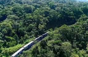 Ferrovia poderia trazer 20 milhões de toneladas de carga industrial para Cuiabá por ano