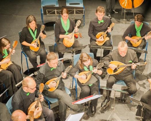 Mandolines (en één mandola) tijdens jubileumconcerten 2015