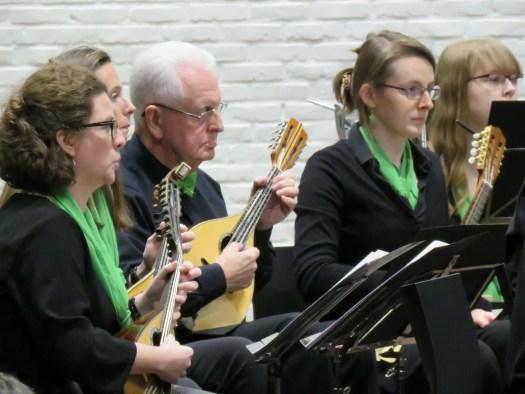 Mandolines tijdens concert voor Anna3, november 2017