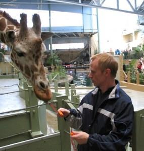 Cyril Brass Feed Giraffe at Calgary Zoo