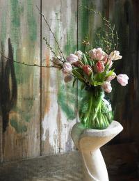Blumenfreude19