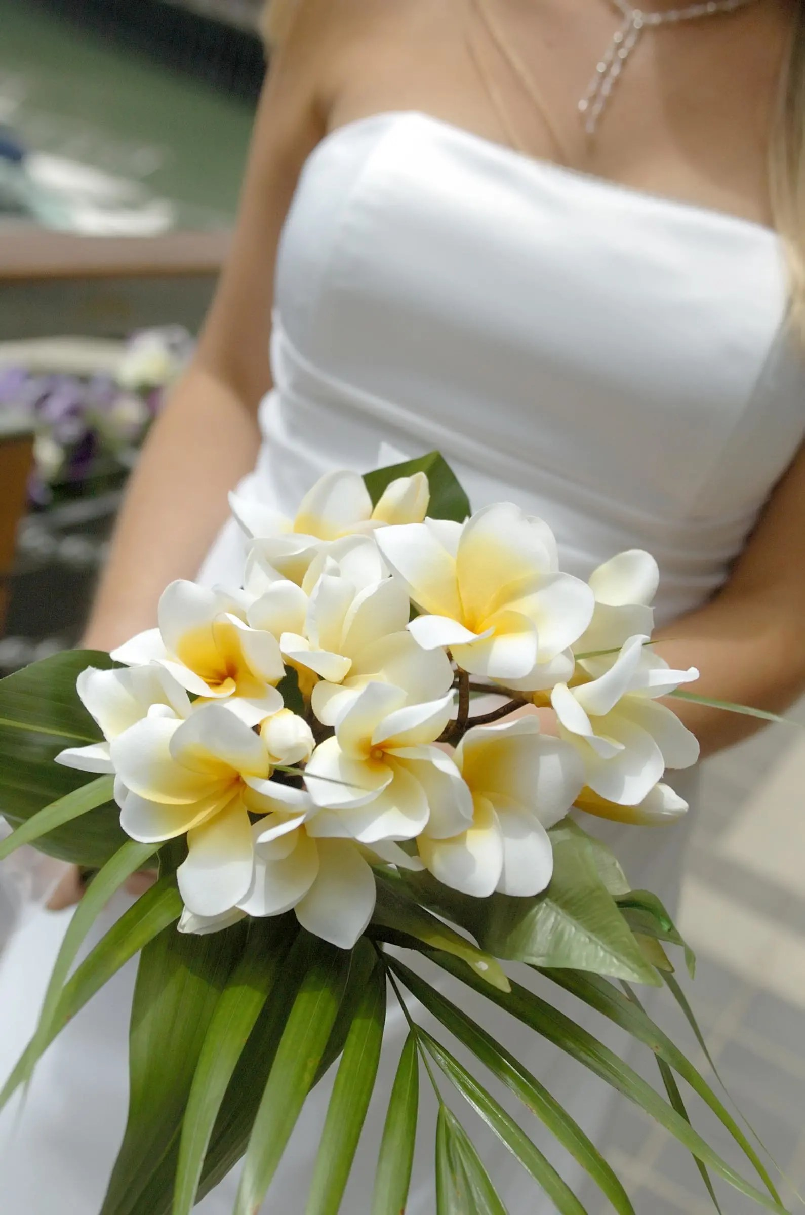 Hochzeitsstrau in Wei  Heiraten mit brautde