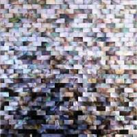 Seashell Mosaic Sheets Cheap Wall Tiles Bathroom Natural ...