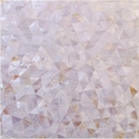 Seashell Mosaic Backsplash Modern Kitchen Natural Shell