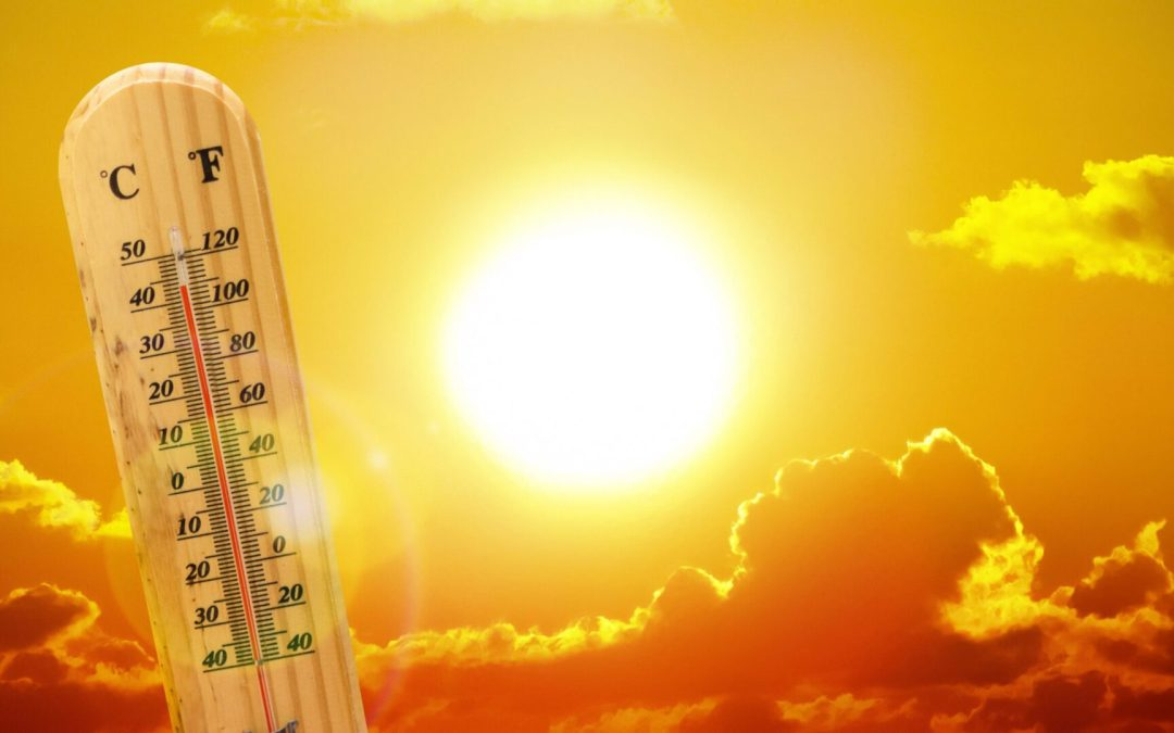 Summer SCORCHER 2021: Your ROOF needs sunblock just like your SKIN!
