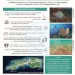 Cartaz Turismo Sustentável