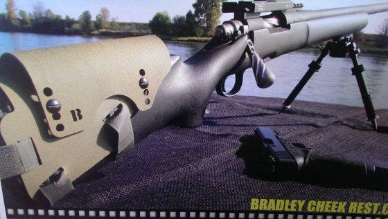 Bradley Cheek Rest 3