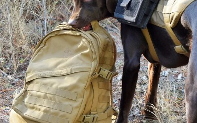 Norseman on the new Huron Assault Pack