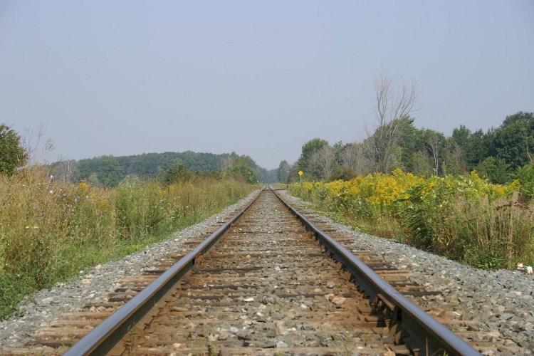 Train Tracks | by Martin Cathrae