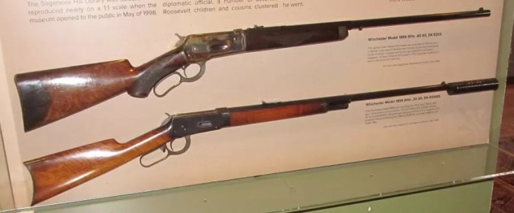 Two of Theodore Roosevelt's rifles in a museum.